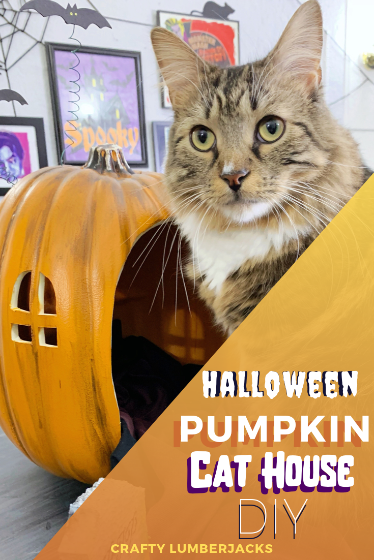 How To Make a Fake Pumpkin Look Real - DIY Halloween Faux Pumpkin Cat Bed - How To Carve a Fake Pumpkin!  Tips and tricks about how to carve a fake pumpkin and how to paint it so it looks real! We created a epic Halloween pumpkin cat house and cat bed for Teddy!  #halloween #halloweendiy #halloweendecorations #plaidcrafts #fakepumpkins #plasticpumpkins #halloweencrafts #halloweencostumesforcats
